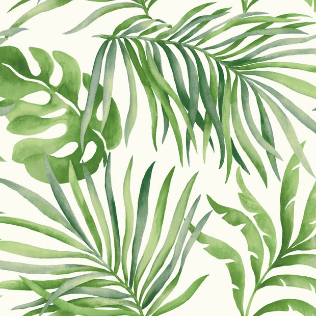Candice Olson Tranquil Paradise Palm Wallpaper - Green