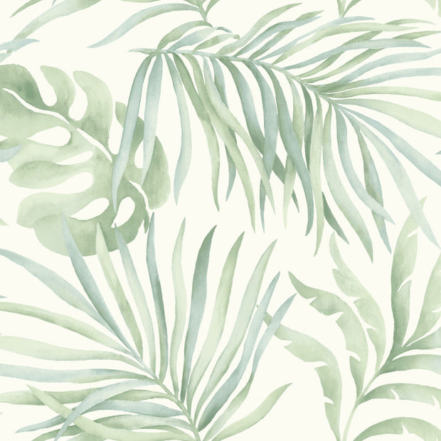 Candice Olson Tranquil Paradise Palm Wallpaper - Light green