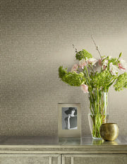 Y6230401 Skin Wallpaper by Antonina Vella Light Grey