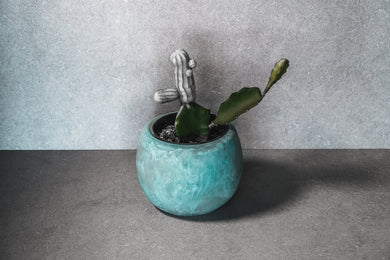 Medium Succulent Pot - Aqua