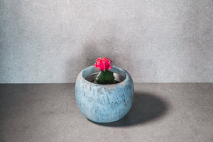 Medium Succulent Pot - Dusty Blue