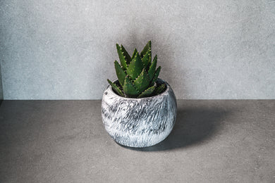 Medium Succulent Pot - Marble