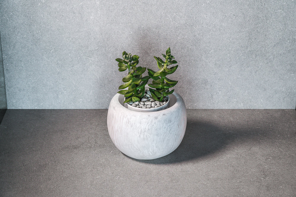 Medium Succulent Pot - White