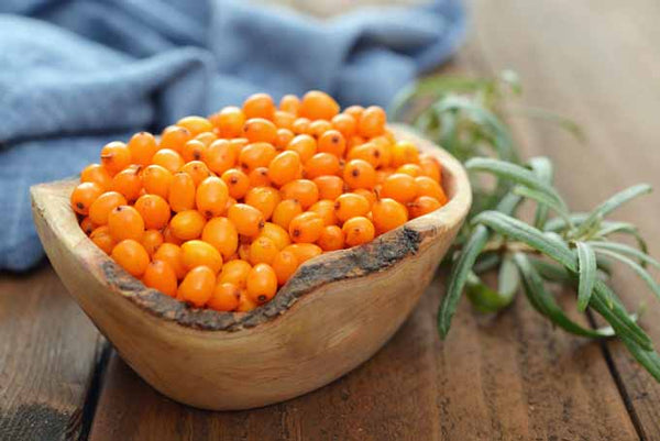 Therapeutic benefits of Sea Buckthorn for skin