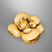 Load image into Gallery viewer, Netsuke - Group of Shells