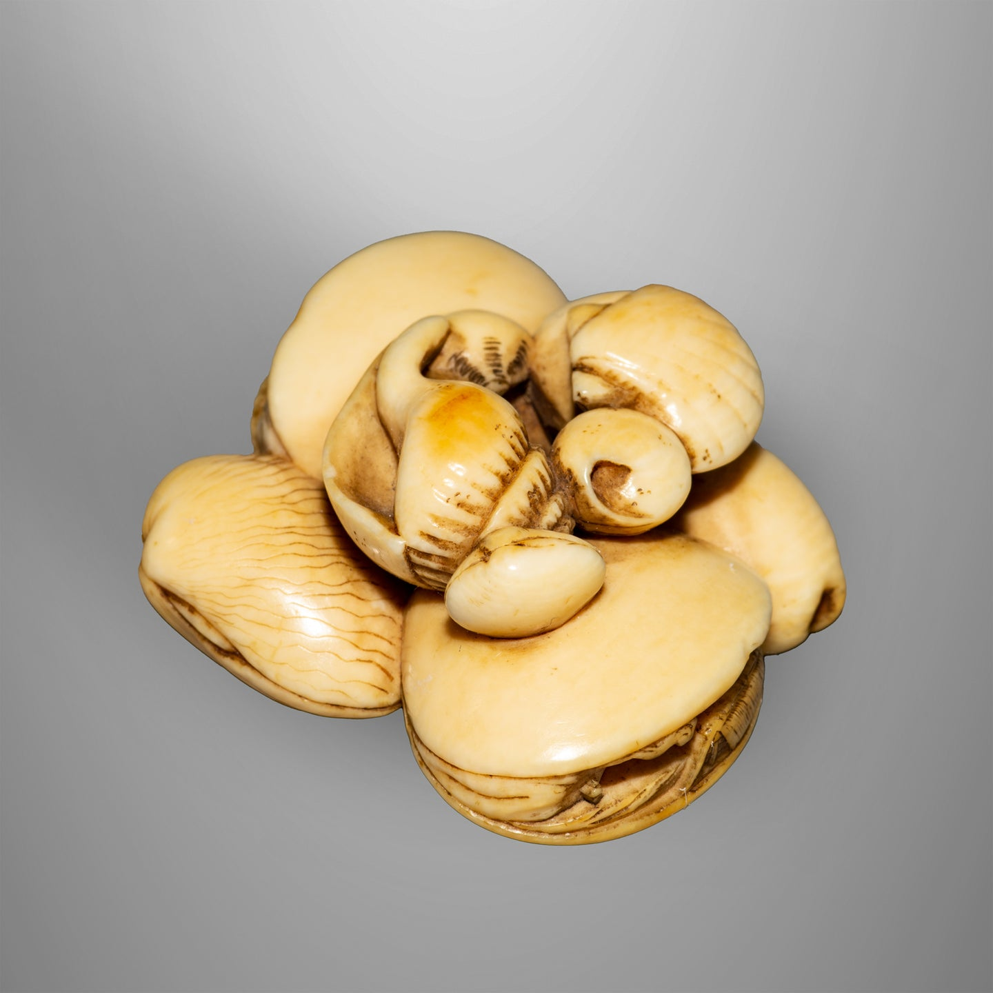 Netsuke - Group of Shells