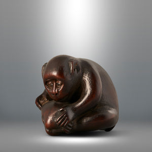 Netsuke - Monkey and Clam