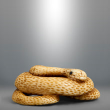 Load image into Gallery viewer, Netsuke - Coiled Snake