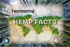 Fascinating Hemp Facts