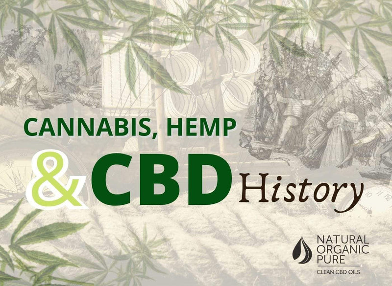 cannabis hemp and cbd history-blog-nopc oils