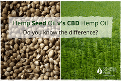 Hemp Seed Oil v CBD Hemp Oil