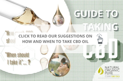 guide to taking cbd serving suggestion nopcoils