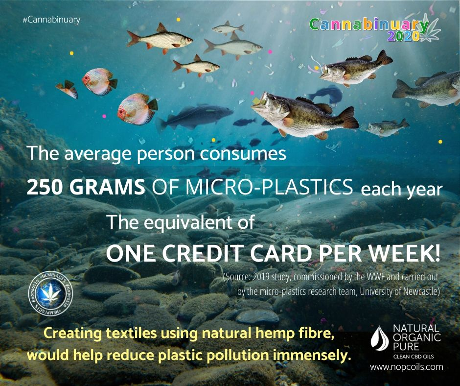 the average human consumes 25o grams plastic-nopcoils hemp facts blog