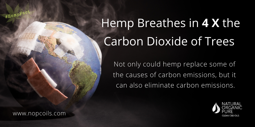 hemp breathes in 4 x the amount of carbon dioxide as trees, nopcoils hemp gfacts blog