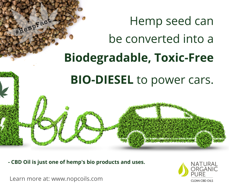 hemp can be used to fuel cars-non toxicc fuel-nopcoils hemp facts blog