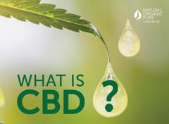 what is cbd-nopc oils blog