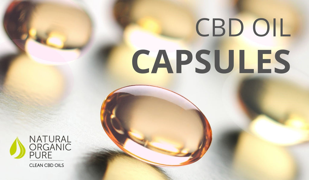 cbd oil capsules | natural organic pure clean cbd oils