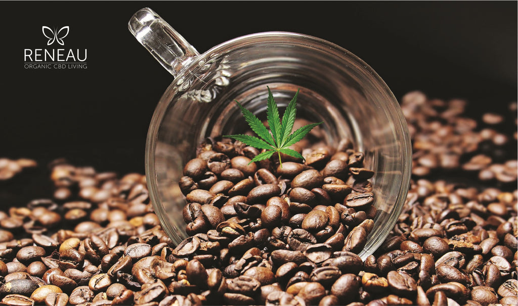 cbd coffee | CBD Edibles | Cup spilt and surrounded by coffee beans and cannabis leaf | Infuse coffee with | Reneau ME | Everyday CBD additive | Natural Organic Pure Clean CBD Oils