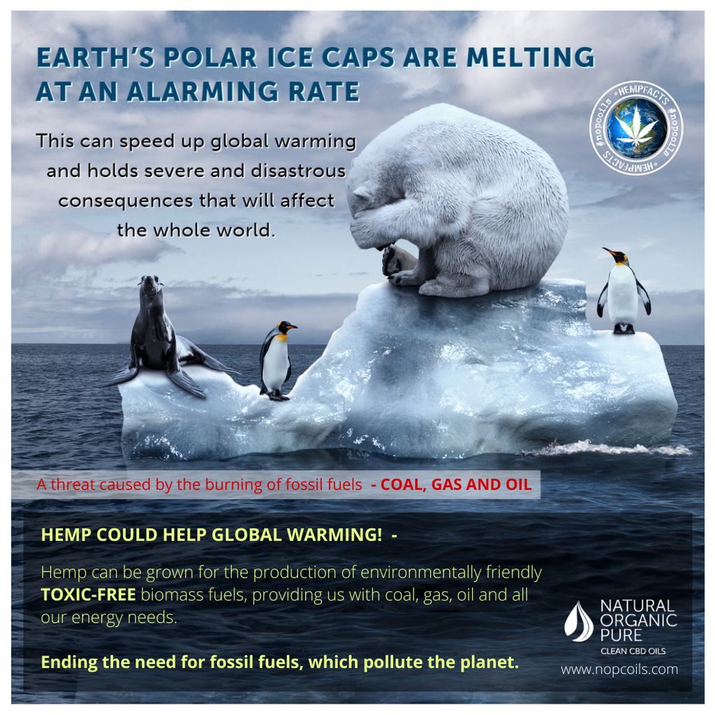 pollution is damaging the earth-ice caps are melting causing global warming-hemp for resources can stop this-nopcoils