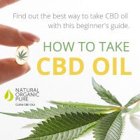 how to take cbd oil-ways to take cbd oil-nopc oils blog