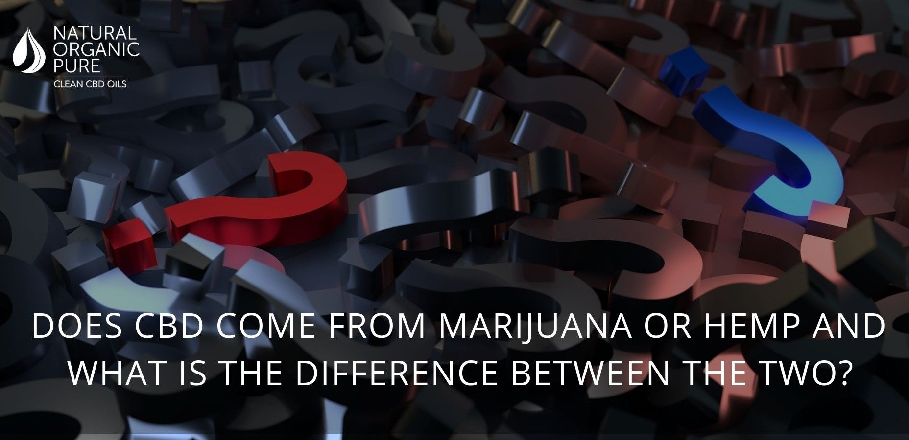 lots of question marks with customer question_Does CBD come from marijuana or hemp and what is the difference between the two_by natural organic pure clean cbd oils