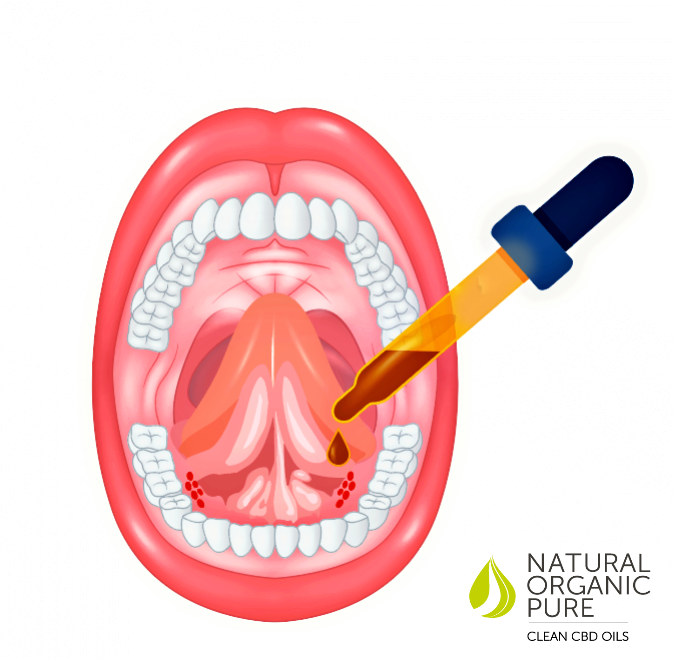diagram of a mouth open wide_with instruction on taking cbd oil under the toungue_sublingually_a pipette dropper with cbd oil droplet going into mouth_ natural organic pure clean cbd oils logo