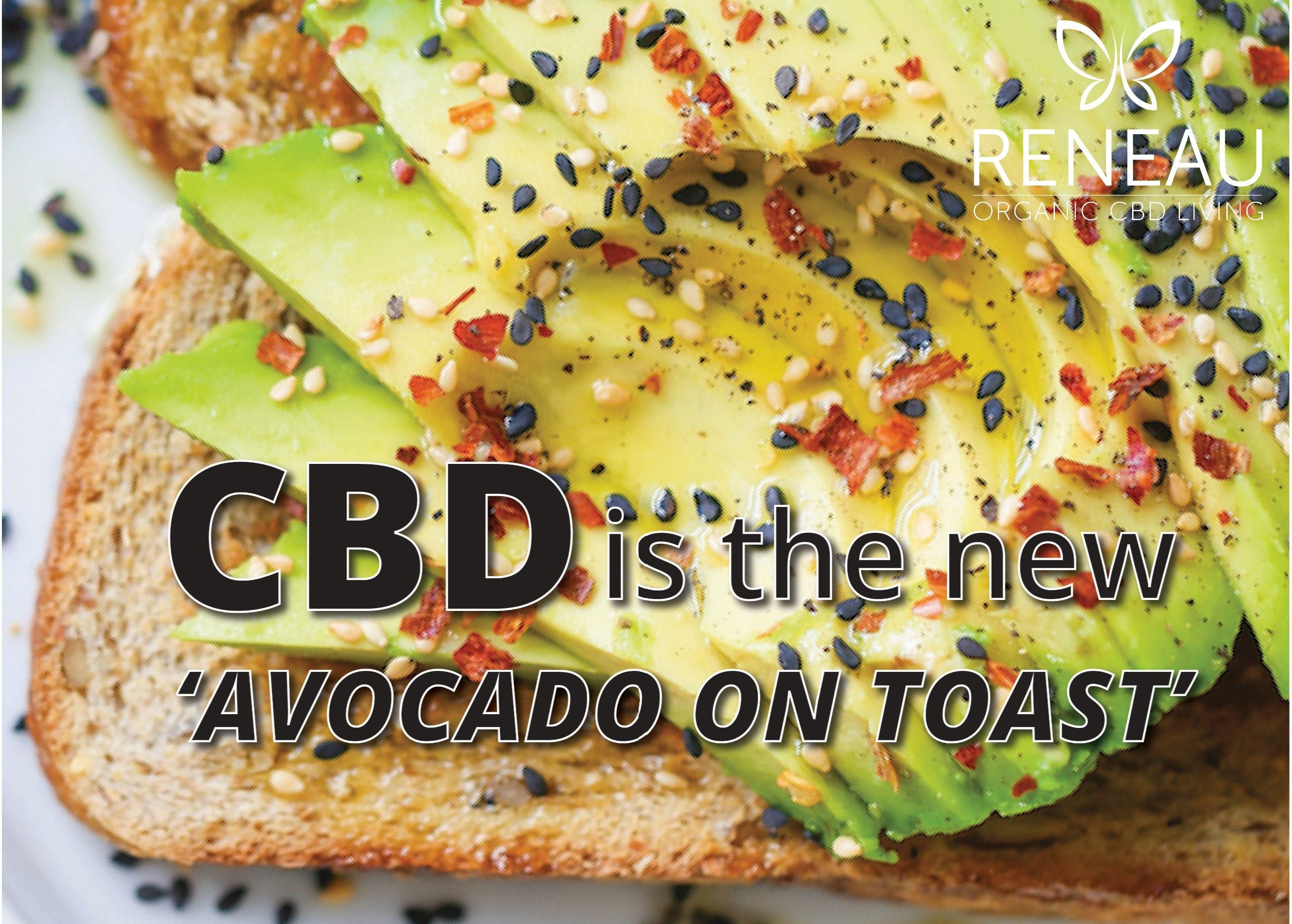 Close up of avocado on toast with title_CBD is the new avocado on toast | Natural Organic Pure Clean CBD Oils