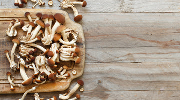 Organic Mushrooms are a Nutritional Powerhouse