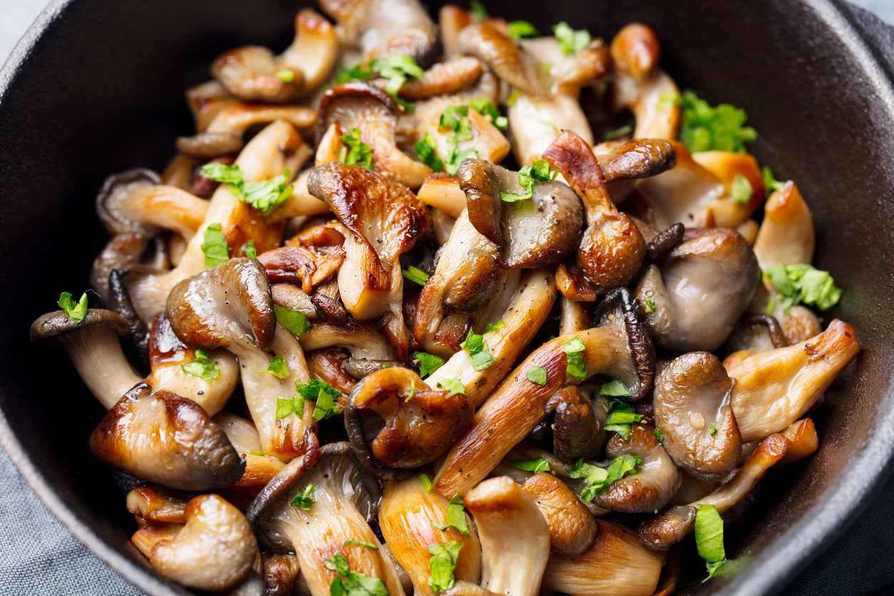 Gourmet Minnesota Mushrooms