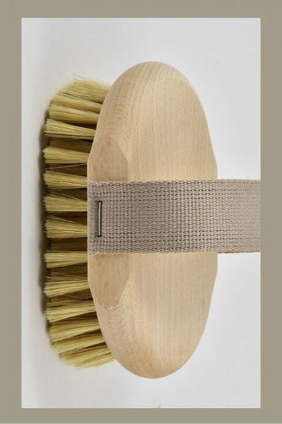 Andree Jardin Massage Brush