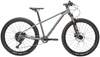 "Cleary Bikes Scout 24"" Complete Bike Gray - Tikes Bikes"