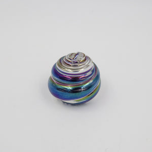 SHELL PAPERWEIGHT IN CLEAR AND IRIDSCENT BLACK