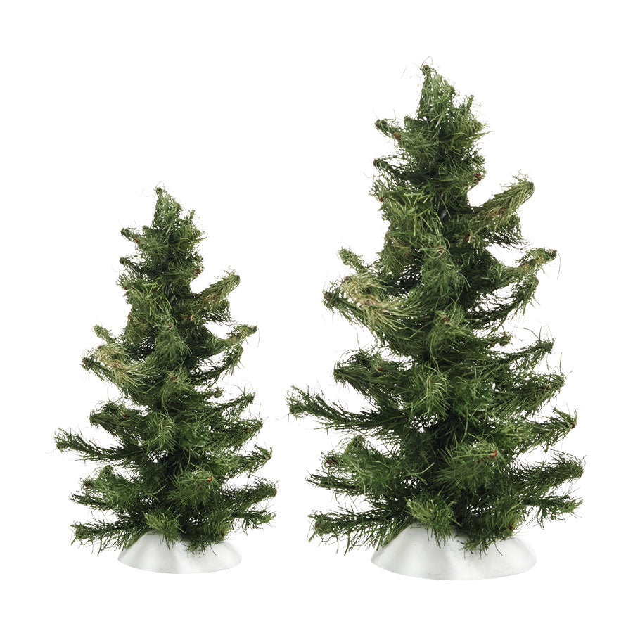 Rugged Spruce Trees, Set of 2