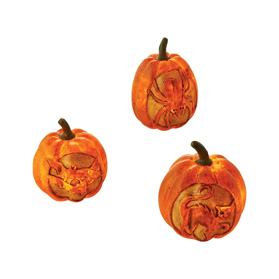 Lit Pumpkin Engravings