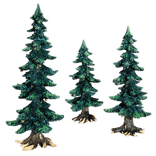 Summer Pine Trees With Pine Co