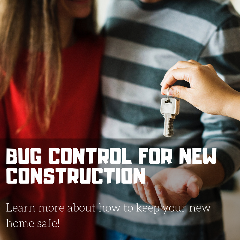 Bug Control For New Construction