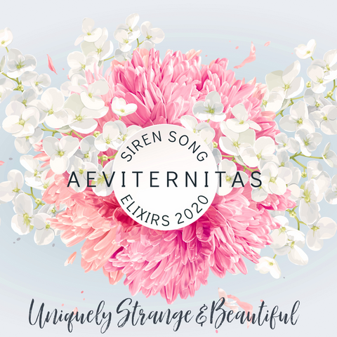Aeviternitas (Rose, Peony, Wild Rose, Plum Blossom, Oriental Musk, Sandalwood, Strawberry, Labdanum)