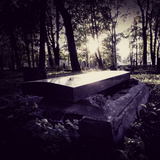 The Empty Grave (fresh dirt, wet grass, oak moss, weeping willow, rosewood coffin, pink lilac, rose, ylang, sweet decay)