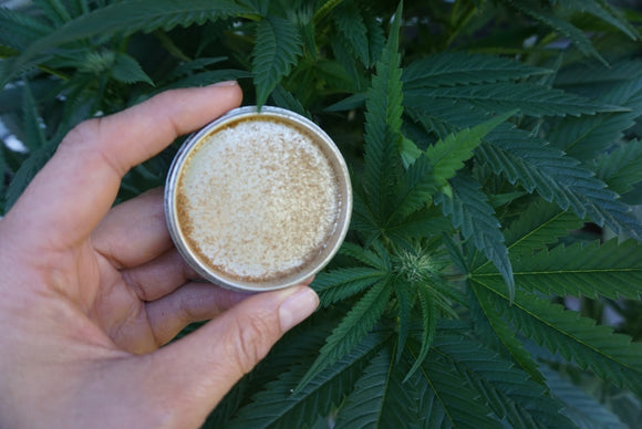 Kief: What is it, why you want it, how to get it...