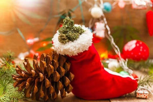 Merry-Juana! 8 Gifts under $50 for the Cannabis lover on your Christmas list