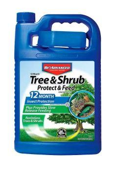 Bayer -Tree and Shrub Insect Control Conc. - gal.