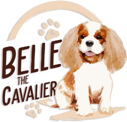 Belle the Cavalier