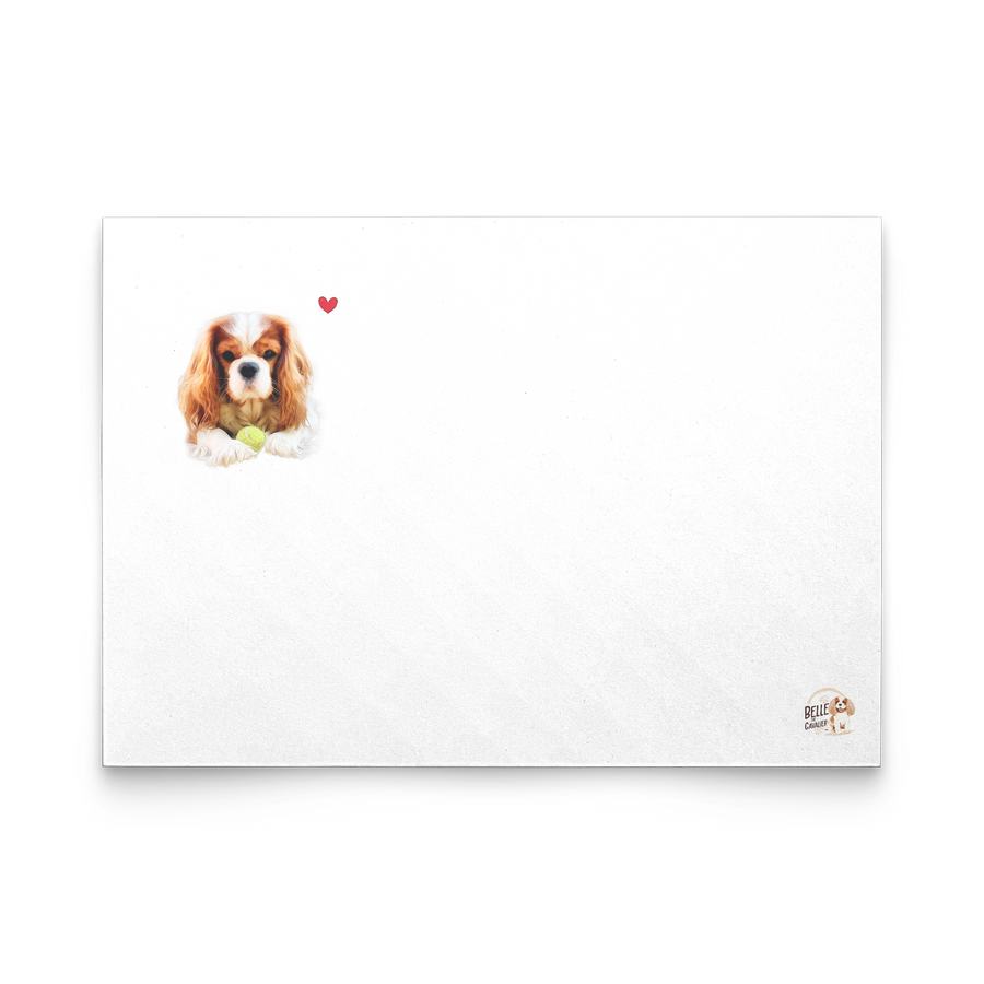10PC Cavalier King Charles Spaniel Greeting Card