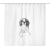 Gray Cavalier Shower Curtain