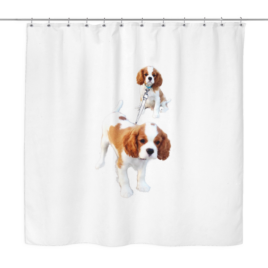 Cavalier Sisters Shower Curtain