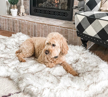 Load image into Gallery viewer, LUXURY-FAUX-FUR-ORTHOPEDIC-MEMORY-FOAM-for-dog-EZ-PET-LIFE