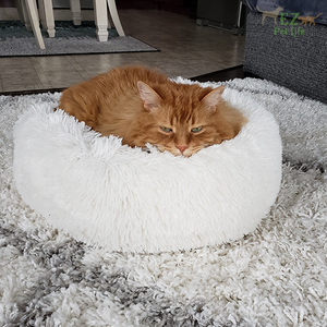 Marshmallow-Bed-For-Cat-EZ-Pet-Life