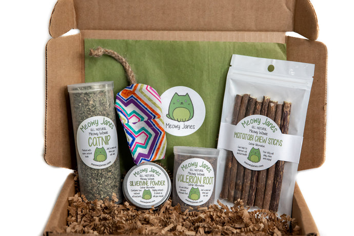 Catnip Alternative Variety Box- Party Pack - Meowy Janes