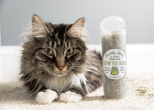 Load image into Gallery viewer, Catnip Bud Blend - Meowy Janes