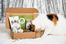 Load image into Gallery viewer, Catnip Alternative Variety Box- Party Pack - Meowy Janes